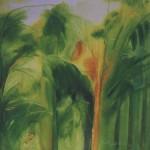 Titulo: Bambues